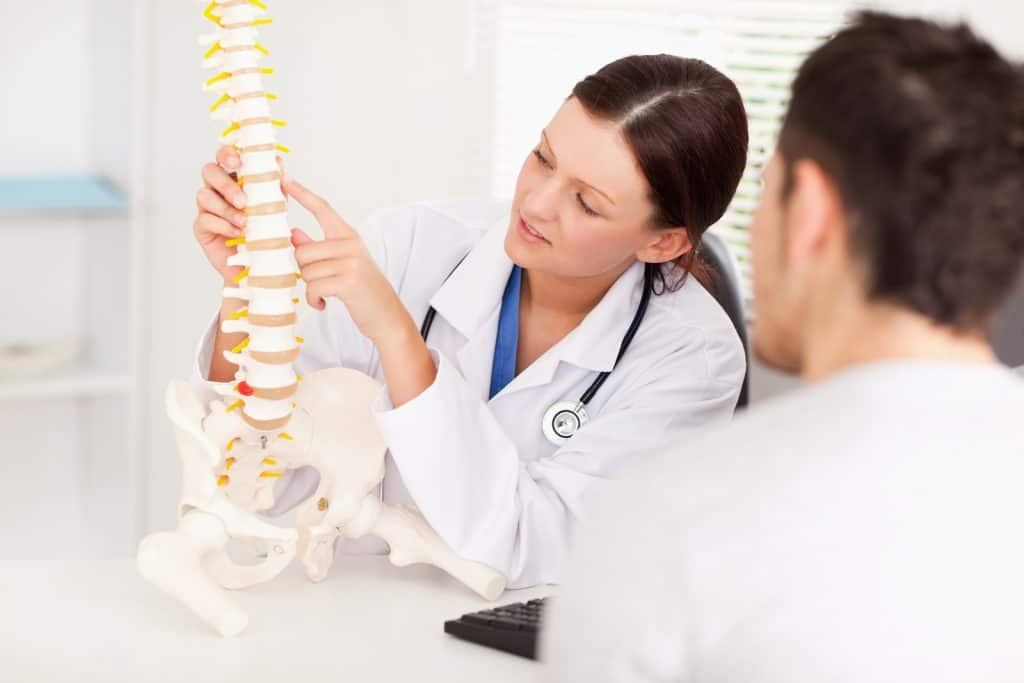 Doctor of Chiropractic image